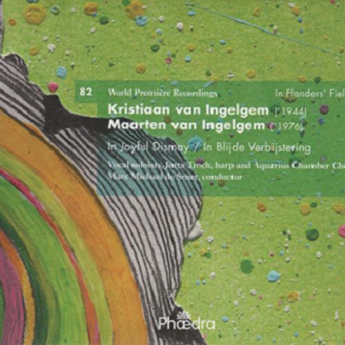 Maarten Van Ingelgem - de roes