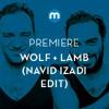 Premiere: Wolf + Lamb 'Make Me Fall' feat. John Camp & Patricia Edwards (Navid Izadi Club Dub)