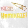 Kamikaze (Owl City Cover feat. Aaron McLaughlin) - FREE DOWNLOAD