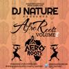 DJ Nature Presents AfroRoots Vol 2 #AfroRootsVol2
