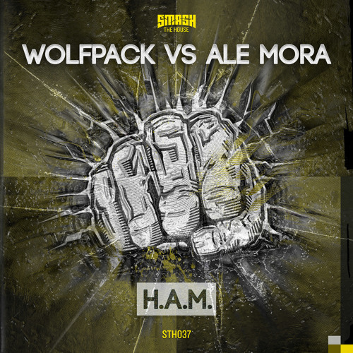 Wolfpack & Ale Mora - H.A.M. - OUT FEBRUARY 3rd 2014 - OUT NOW ON BEATPORT