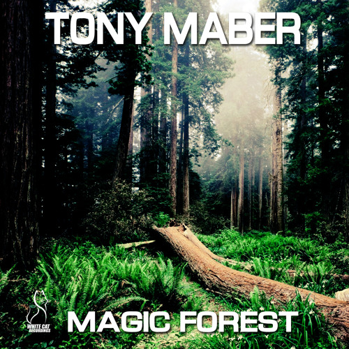 "TONY MABER ""Magic Forest"" Part.2"