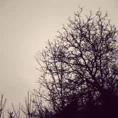 uschelich vor lauter Wetter