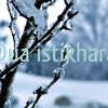 Dua Al Istikharaah HD WITH FULL TEXT In Description