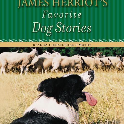 James Herriot's Favorite Dog Stories audiobook excerpt