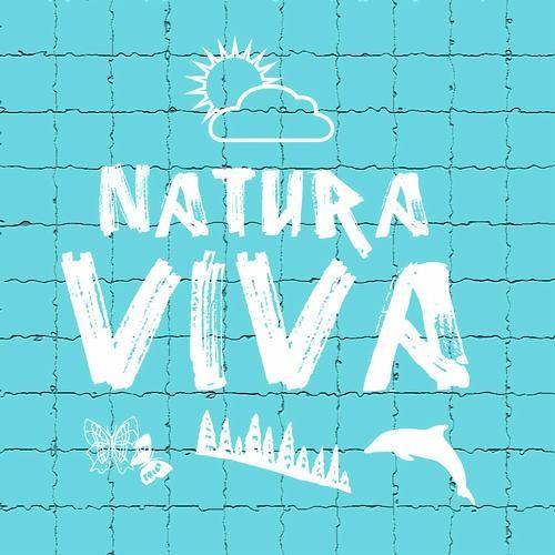 Delusiohm - First Steps (Original Mix) @ Natura Viva Records - ITA