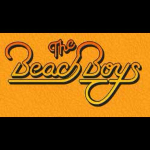 The Beach Boys Medley / Stars on 45