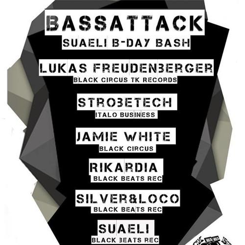Rikardia | Bassattack 2 | Ampere Club Zurich | 17.01.2014