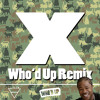 X (Xzibit X-Remix)