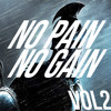 No Pain, No Gain - Vol.2