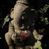 Ganesha Sharanam live
