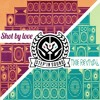 The Revival / Shot By Love - REGGAE MIX 2013