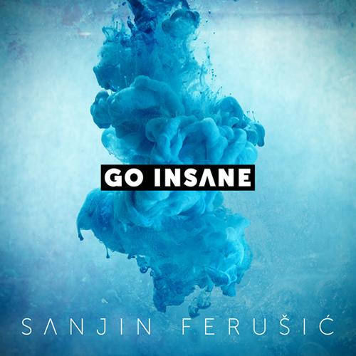 Sanjin Ferusic - Go Insane