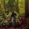 Dharma Bums Exp DUO - The DOOR TREE