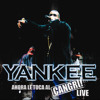 Gata Gangster - Don Omar - daddy yanke (producer-fm)