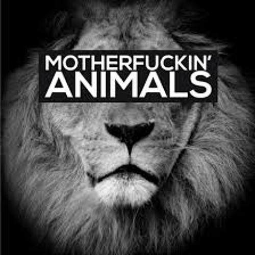 Martin Garrix Animals (Djshark Bootleg Remix)