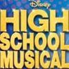 High School Musical 2 - Gotta Go My Own Way (cover)