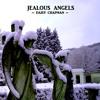 Jealous Angels - Daisy Chapman
