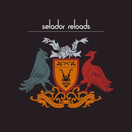 Kucna Muzika - Feel It (SEFF Remix) [Selador]