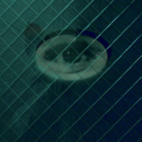 "Nanobyte - Industrial Riot (""The Quiet Ones"" Trailer)"