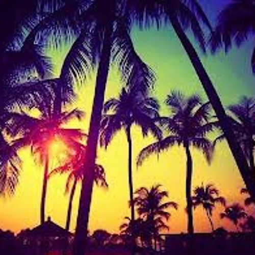 Palm Trees And Good Weed