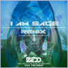 Stay The Night  (I Am Sage Remix) [FREE DOWNLOAD]