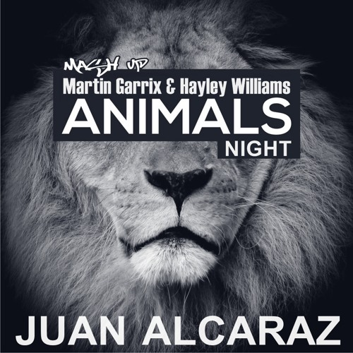 Martin Garrix & Hayley Williams - Animals Night (Juan Alcaraz Mash Up) **FREE DOWNLOAD**