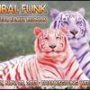 Donald Glaude live @ Tribal Funk Nov 20yr Family Reunion introducing  LNS