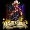 Marco Brasil - Gusttavo Lima - Doidaça - Remix Sertanejo 2014