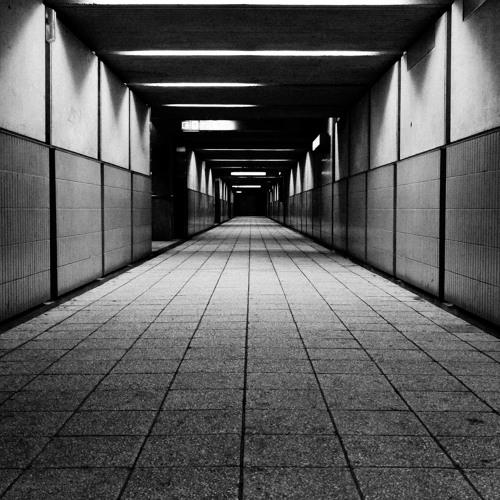 David Meiser - Walking Through