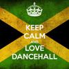 NEW DANCEHALL REGGAE 2014 MIX