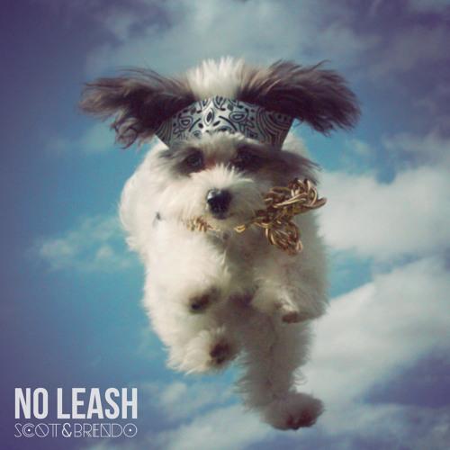 No Leash