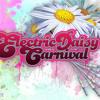 Swedish House Mafia - Electric Daisy Carnival 2010
