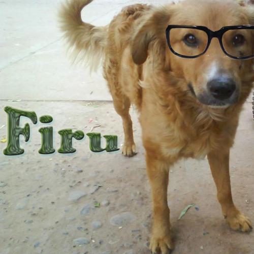FIRU 40