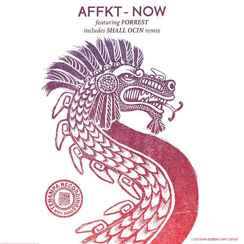 AFFKT Feat Forrest - Now (SHALL OCIN Remix) - Snippet