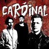 Cardinal - Fine (Alkaline Trio cover)