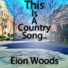 This Is A Country Song.. - A Great Big Pile Of Leaves cover