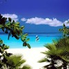 List O Mania: 10 Caribbean Slang Terms - John Derringer - 01/23/14