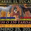CARRIL EL TUCAN - EL WIPER VS EL MORO ESPAÑOL