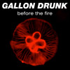 Gallon Drunk - Before The Fire (exclusive free download)