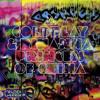 Coldplay - Princess Of China (Cover)