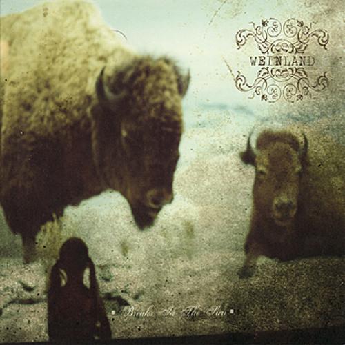 Weinland - Sunken Eyes (from the album Breaks in the Sun)