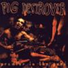 Pig Destroyer - Piss Angel 8bit
