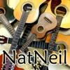 Nat Neil   Overkill - Men At Work (cover bossa)