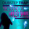 Dubstep Trap - Harlem Shake Anthem