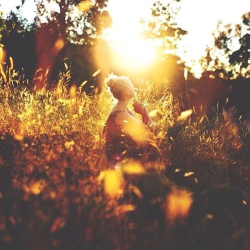 Hoja en Verde - Sunshine [DEMO]