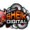 MC DALESTE CHEGUEI SAI FORA VOLTEI LANÇAMETO 2013 (Radio Sheik Digital HD)