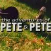 Hey Sandy (Adventures of Pete & Pete Cover) - Her
