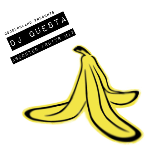 DJ QUESTA / ASSORTED FRUITS MIX