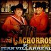 El Cantante ~ Los Cachorros De Juan Villarreal mp3